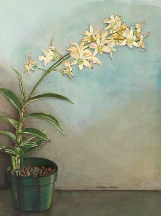 White Dendrobian Orchids giclee fine art reproduction